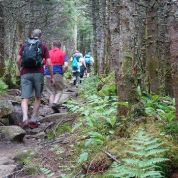NHBA-Pierce-Mountain-Hike---follow-the-leader-for-web