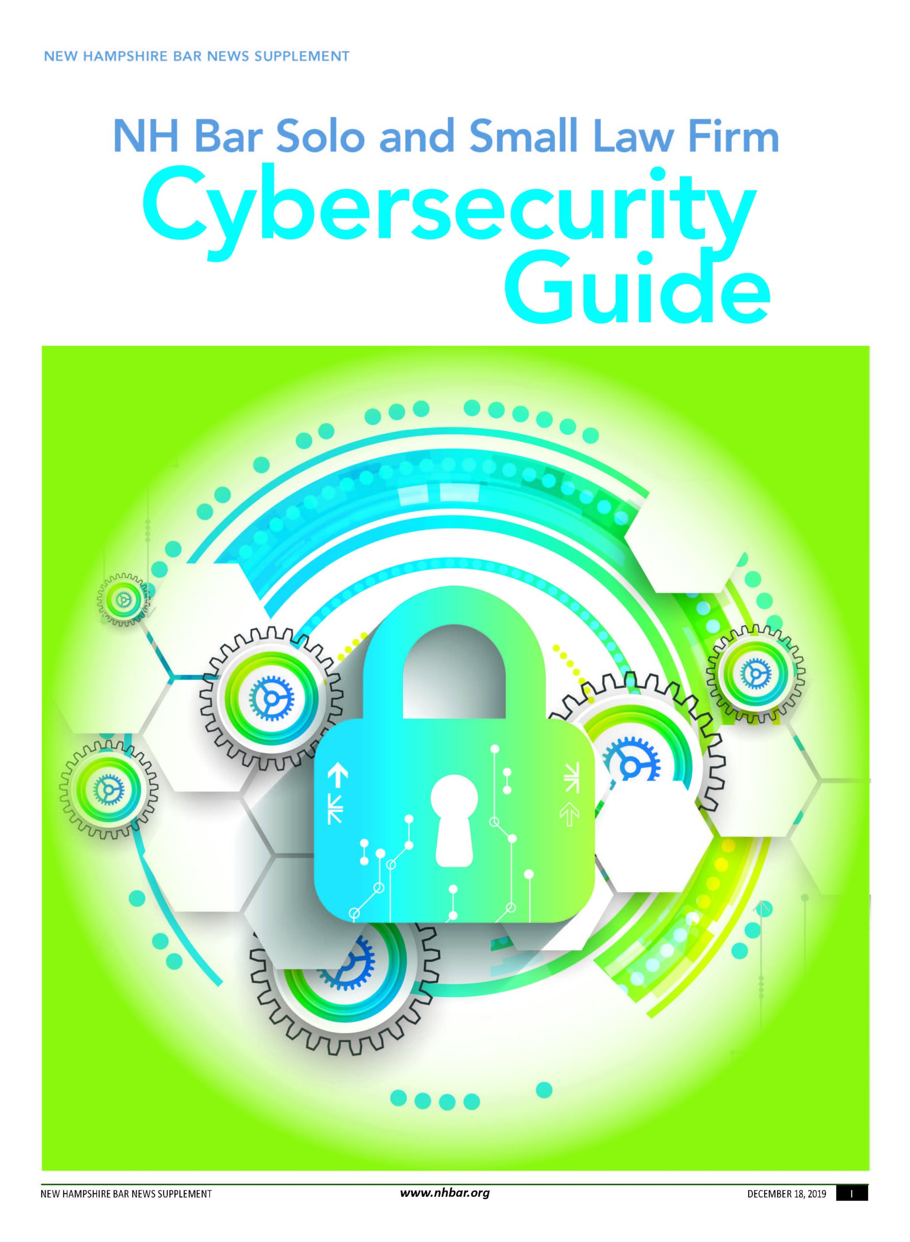 2019 Cybersecurity Supplement